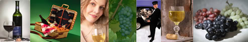 Wine Tours in Long Island  - LI Vineyard Tours - specializing in limousine services for wine tasting in the Long Island, New York area.  Tours featuring professional chauffeurs, luxury sedans, stretch limousines, vans, more.